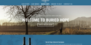 buried hope wines